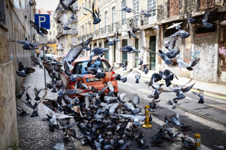 Styleshiver-Lisbon-Travel-Diary-19