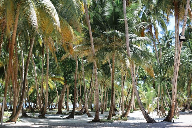 Style-Shiver-Travel-Maldives-Amilla-Fushi-24