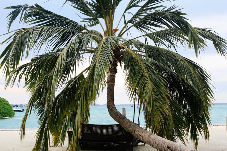 Style-Shiver-Travel-Shangri-La-Maldives-26
