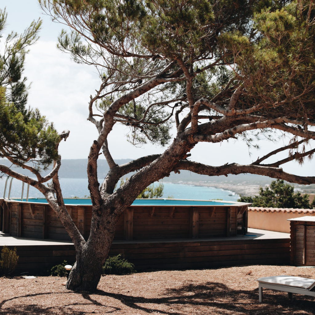 Travel Diary | Formentera with FeWo